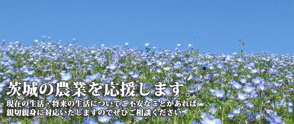 茨城の農業を応援します。1
