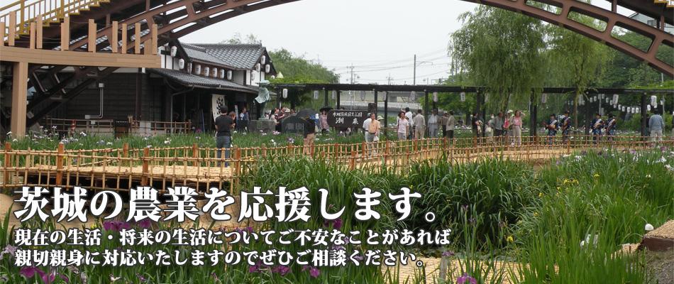 茨城の農業を応援します。2