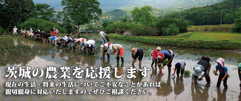 茨城の農業を応援します。5