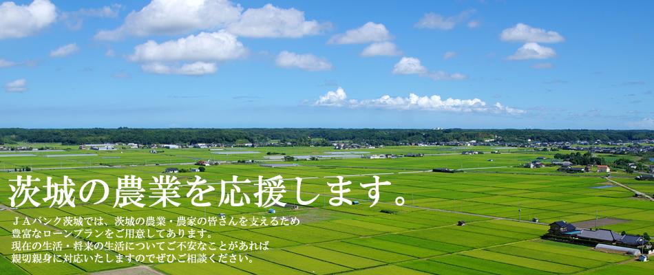 茨城の農業を応援します。